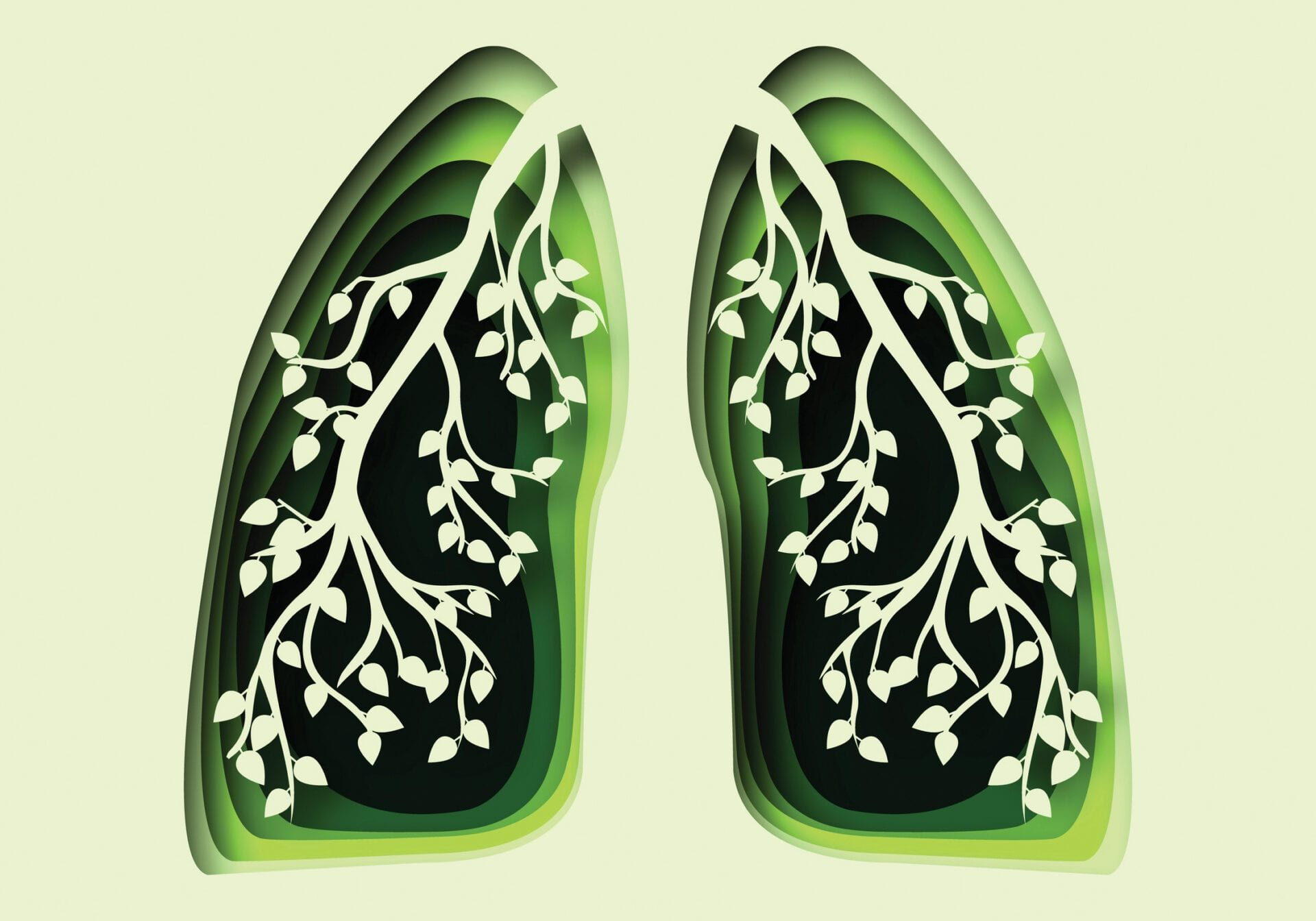 abstract 3d paper cut illustration of green human healthy lungs with branch and leaves. Vector template in paper art style. Lungs health concept.